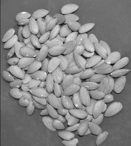 A picture of lots of Almond nuts